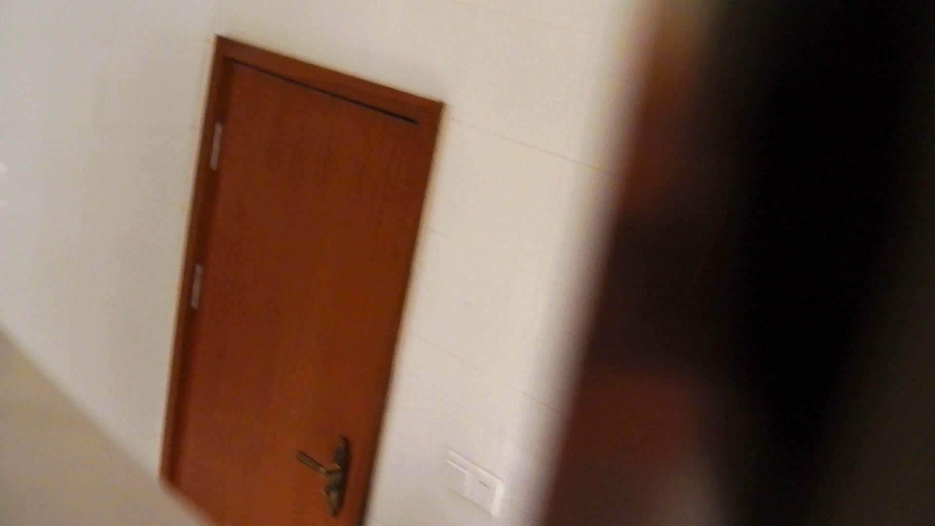 洗寿観音さんの 化粧室は四面楚歌Nol.4 洗面所  104pic 98