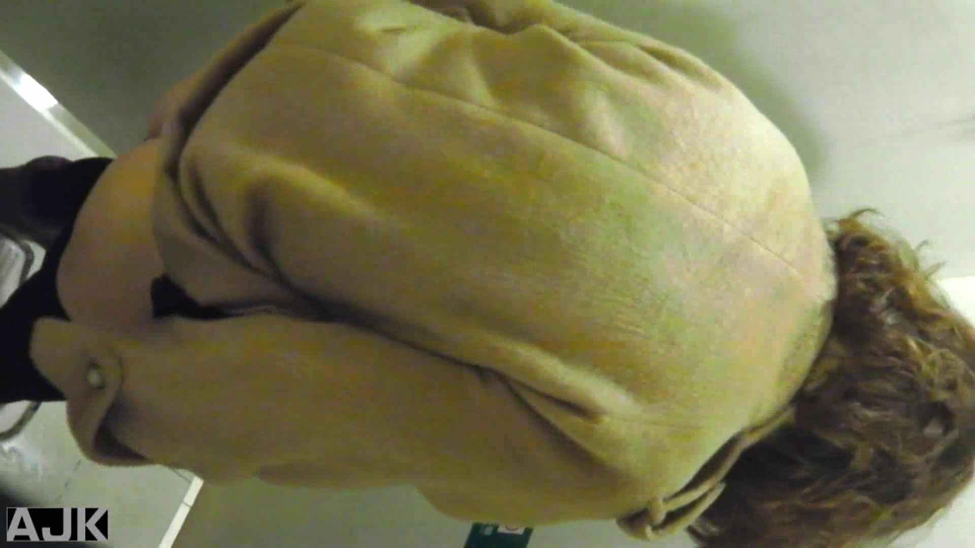 隣国上階級エリアの令嬢たちが集うデパートお手洗い Vol.20 お手洗い  89pic 30