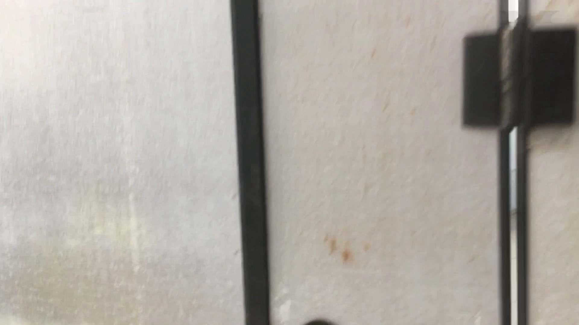 芸術大学ガチ潜入盗sati JD盗撮 美女の洗面所の秘密 Vol.95 洗面所 アダルト動画キャプチャ 68pic 38