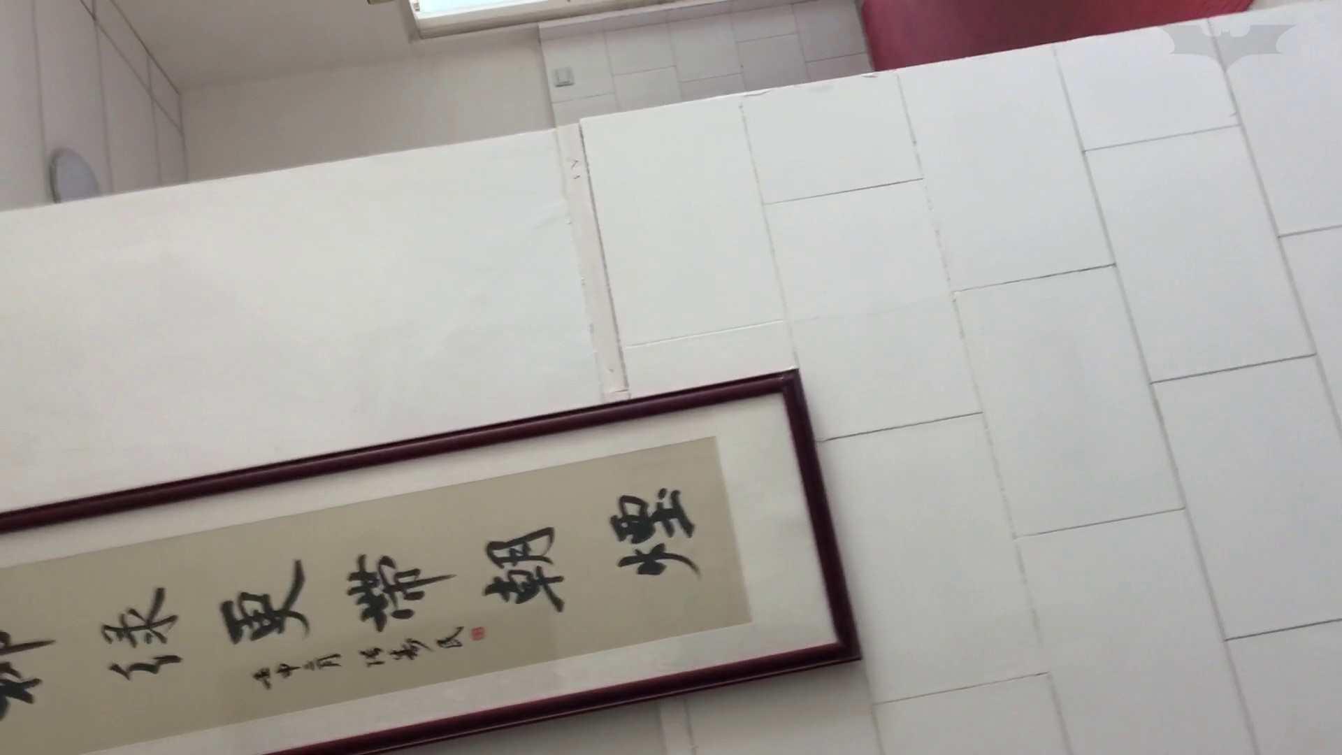 芸術大学ガチ潜入盗sati JD盗撮 美女の洗面所の秘密 Vol.95 潜入 おまんこ動画流出 68pic 61