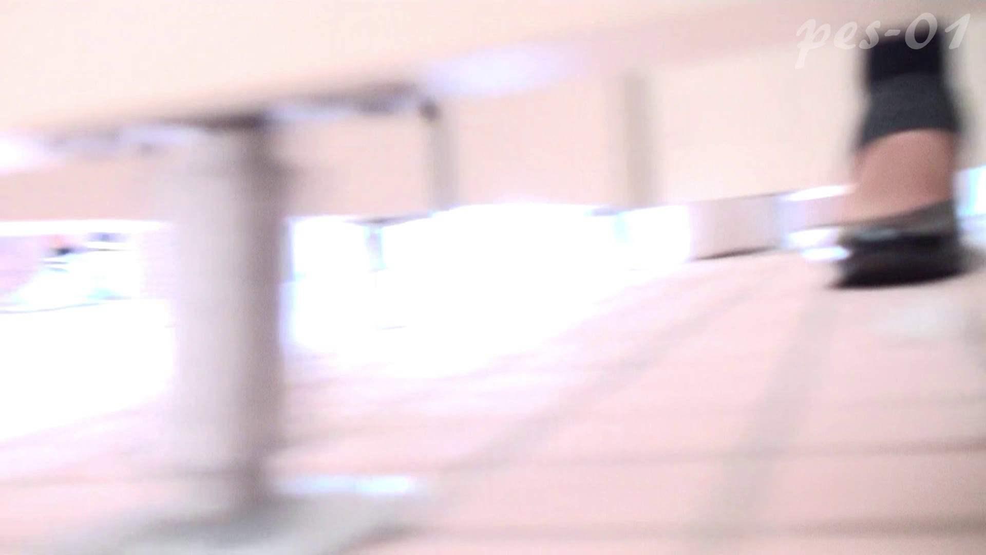 ※100個限定販売 至高下半身盗撮-プレミアム-【体育館編】VOL.1 体育館   色っぽいOL達  85pic 31