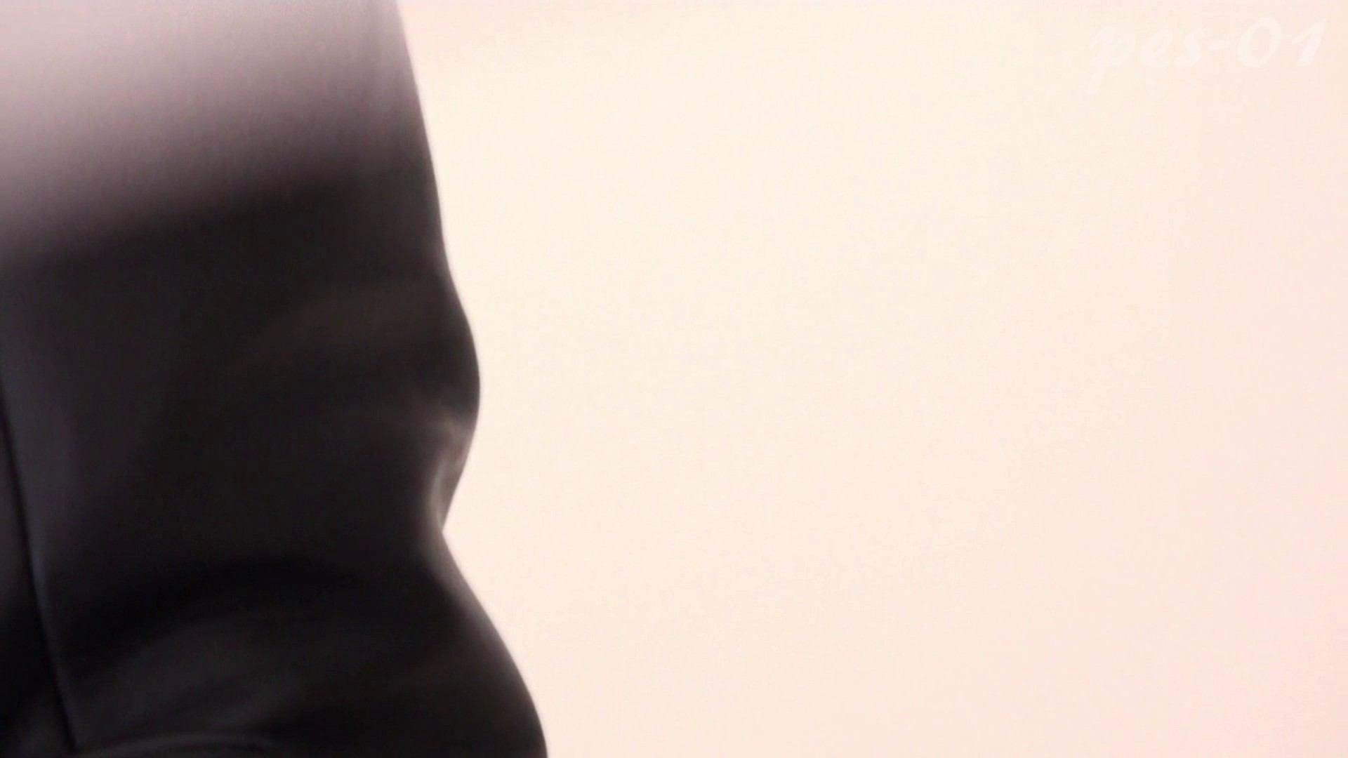 ※100個限定販売 至高下半身盗撮-プレミアム-【体育館編】VOL.1 体育館   色っぽいOL達  85pic 70