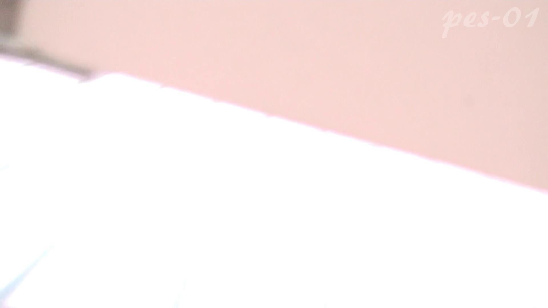 ※100個限定販売 至高下半身盗撮-プレミアム-【体育館編】VOL.1 体育館   色っぽいOL達  85pic 76