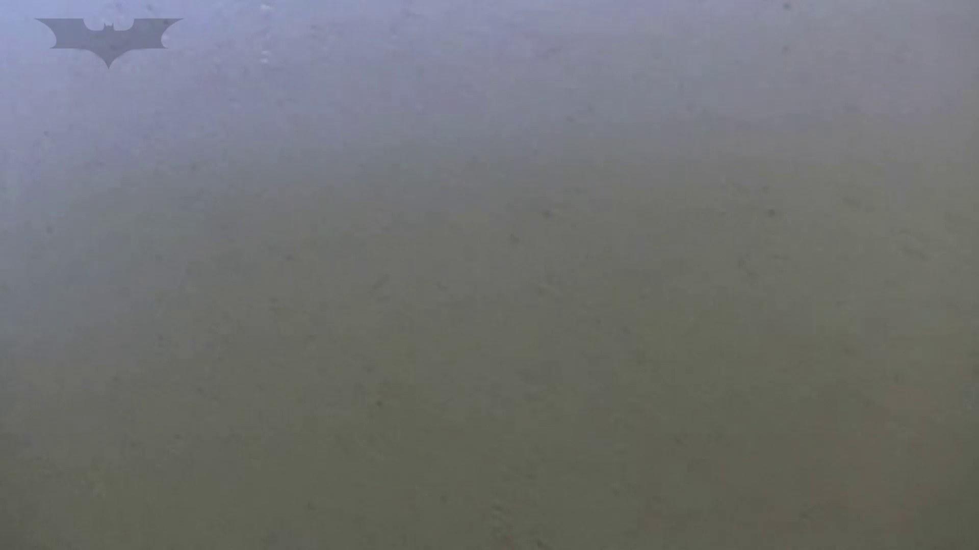 夏の思い出浜辺トイレ盗撮Vol.27 色っぽいOL達 | 和式でハメ撮り  98pic 21