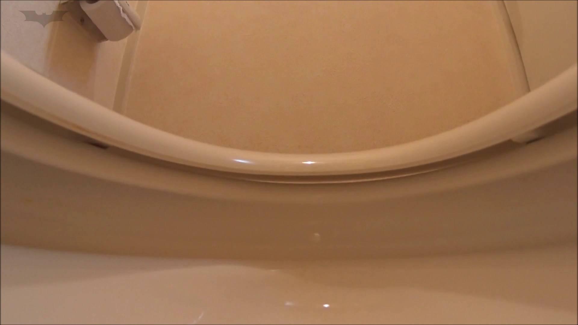 vol.01[洗面所]実はコレが目的でした。-安堵でブリブリ垂れ流す女子大生- 盗撮 オマンコ無修正動画無料 50pic 21