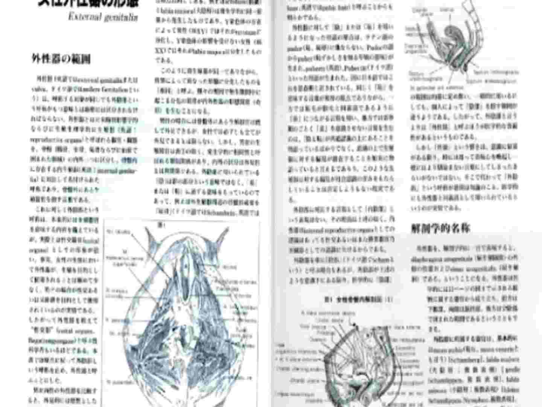 日本女性の外性器① 0  100pic 6