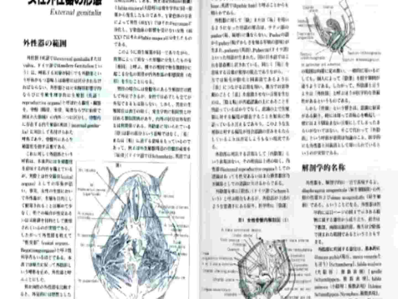 日本女性の外性器① 0  100pic 16