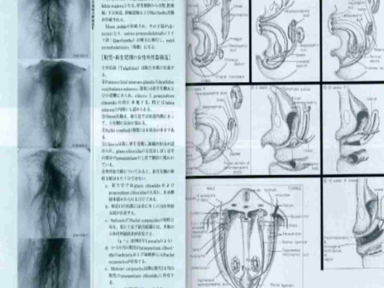 日本女性の外性器① 0 | 0  100pic 41