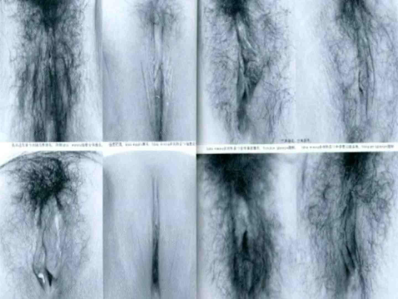 日本女性の外性器① 0  100pic 50