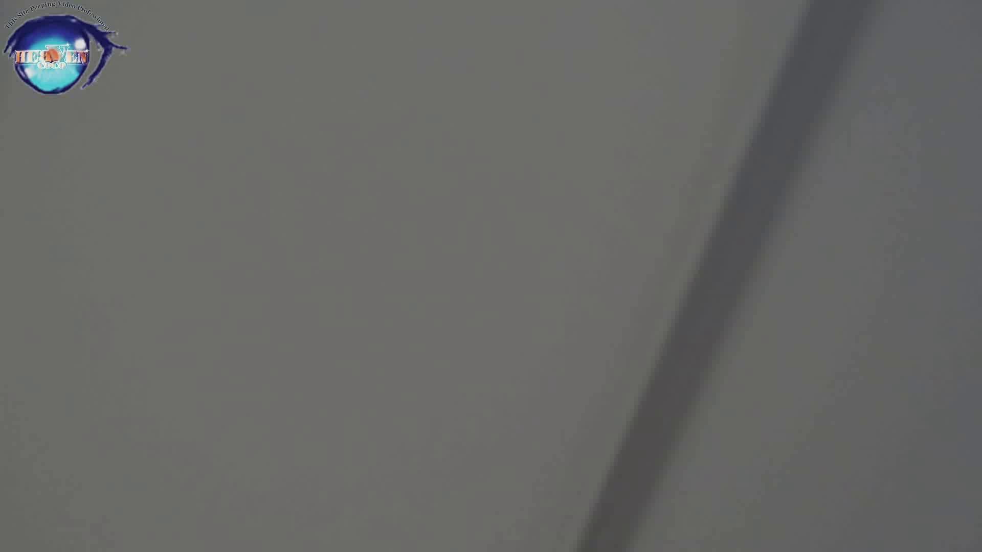 雅さんの独断と偏見で集めた動画集 厠編vol.08 0   0  74pic 11