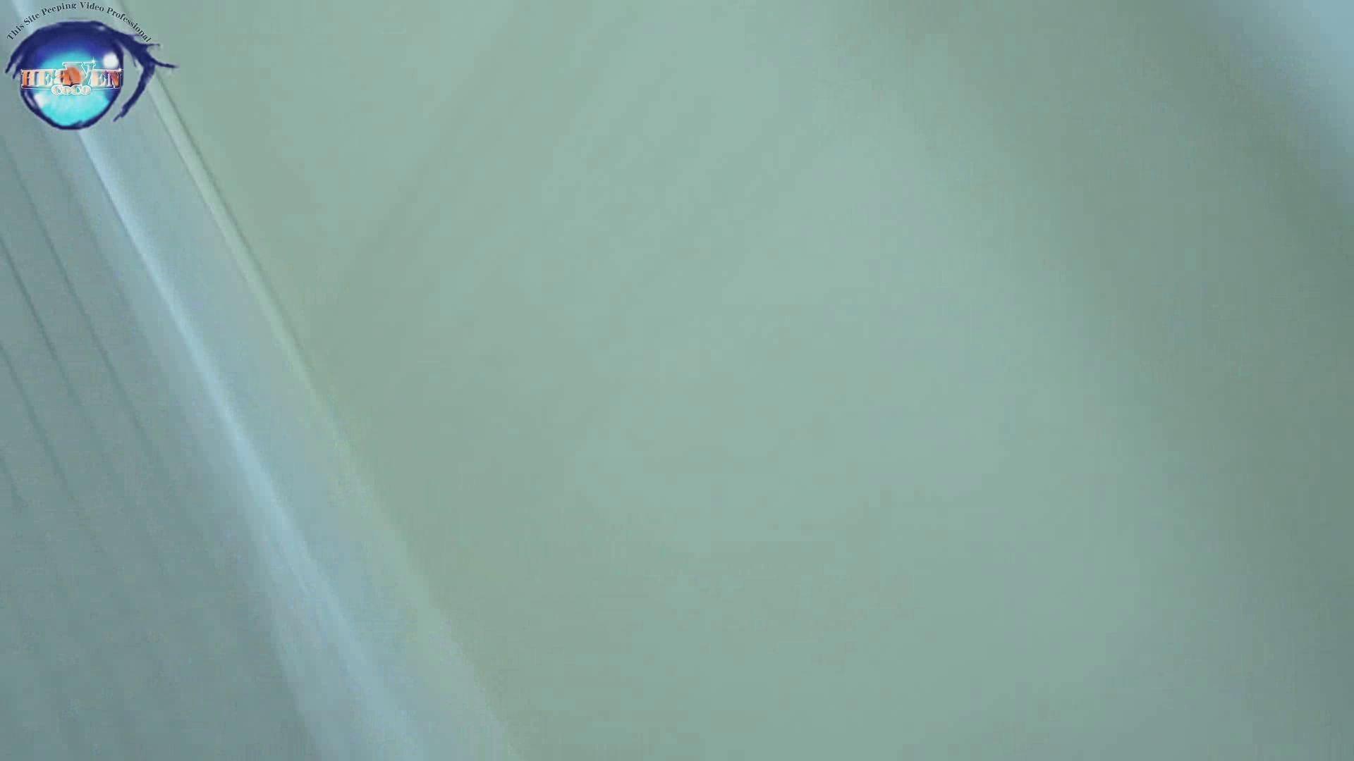 雅さんの独断と偏見で集めた動画集 厠編vol.08 0  74pic 14