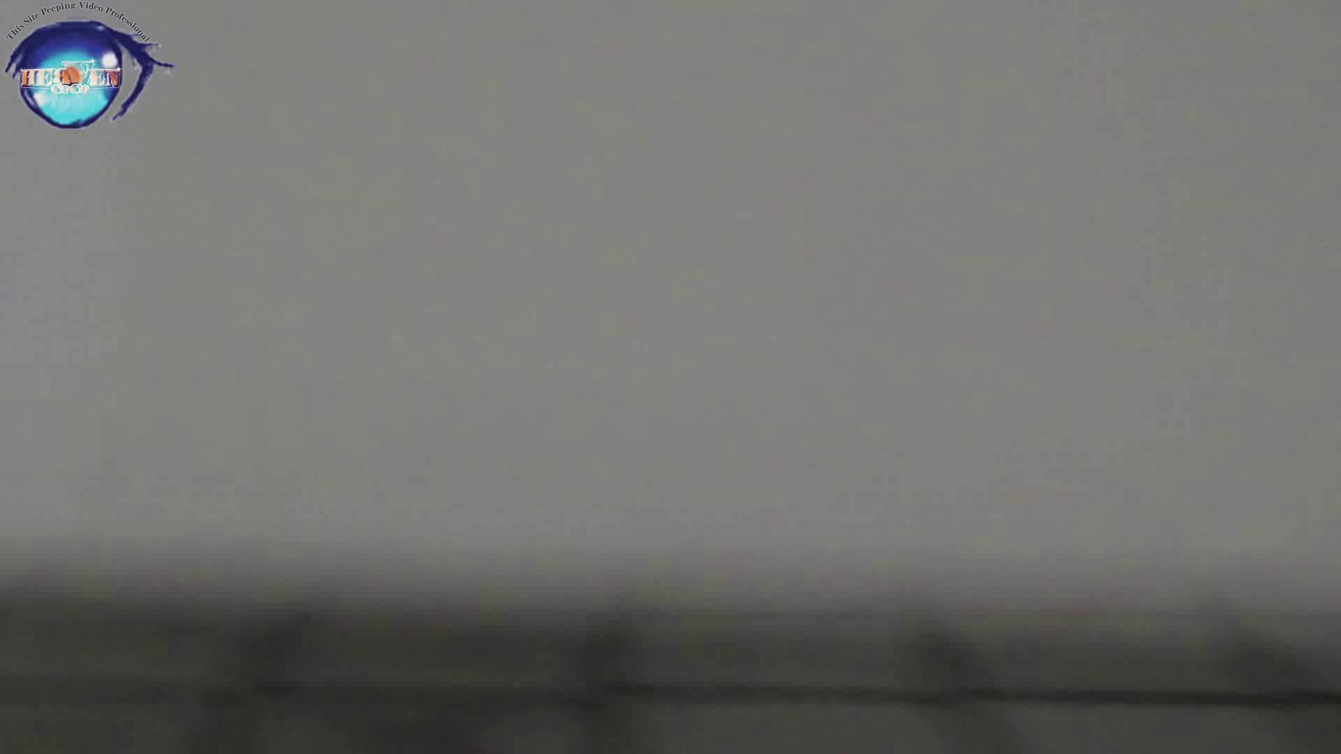 雅さんの独断と偏見で集めた動画集 厠編vol.08 0   0  74pic 43