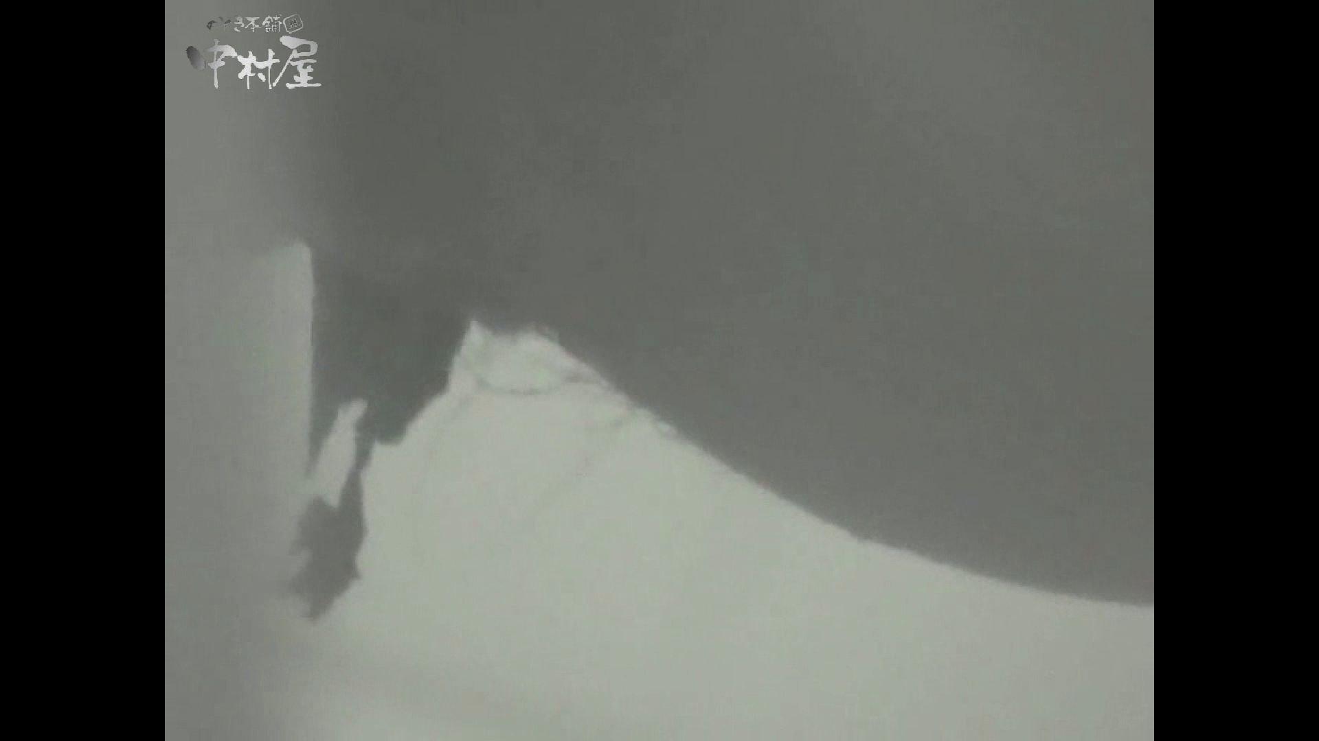 女子トイレ盗撮若い嬢編vol.15 0  48pic 14