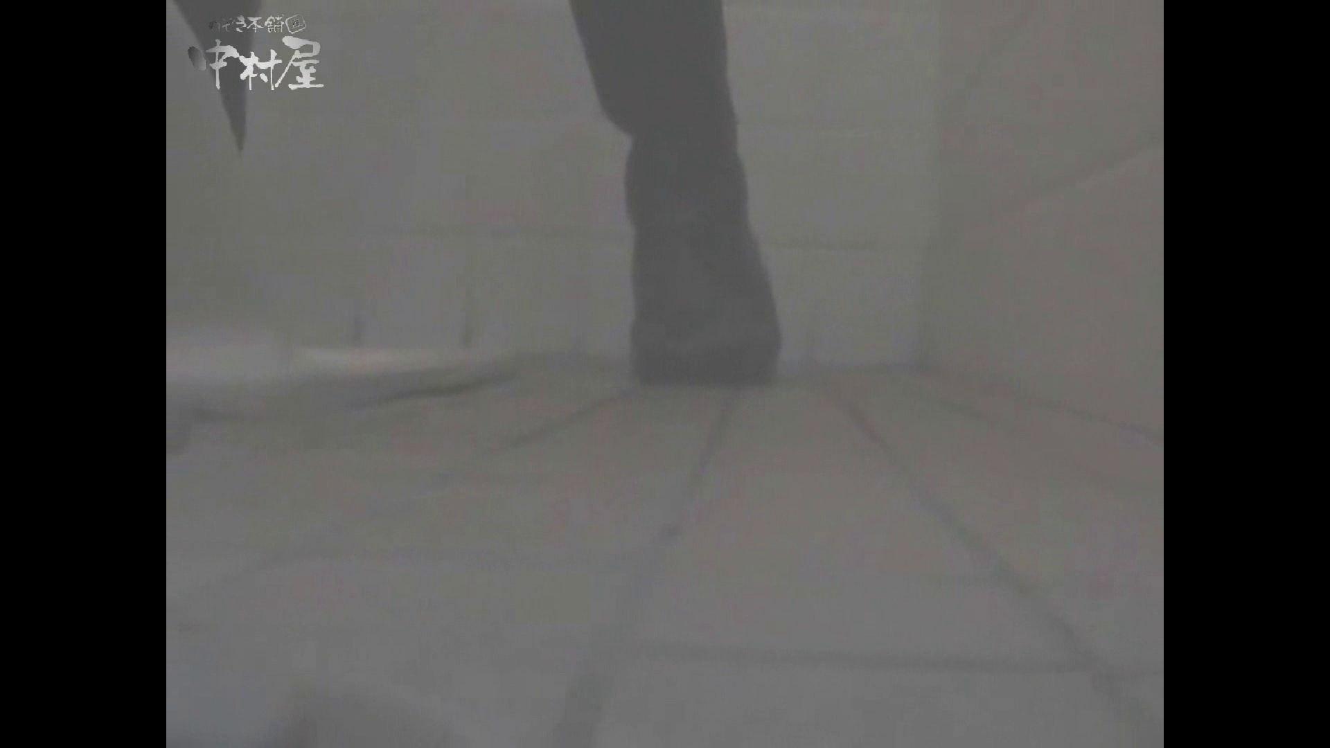 女子トイレ盗撮若い嬢編vol.15 0  48pic 20