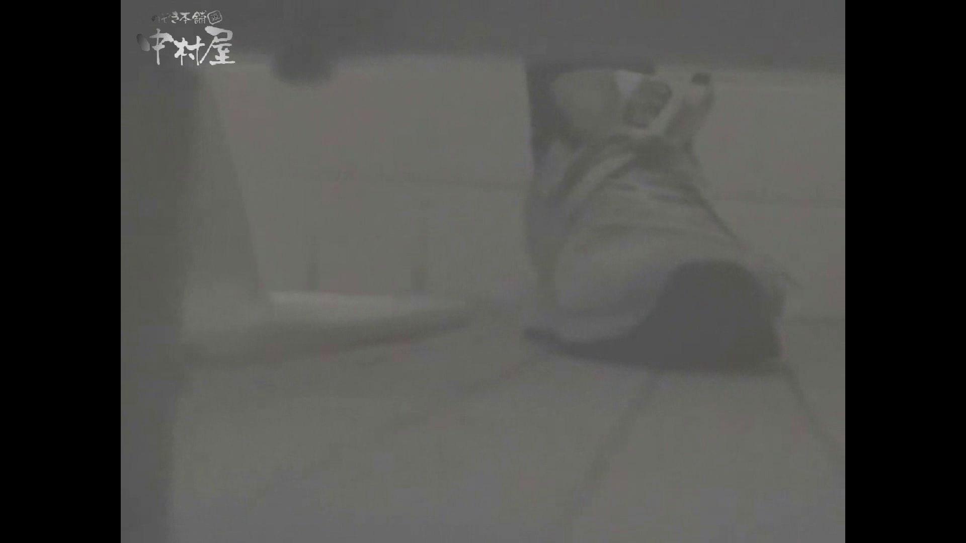 女子トイレ盗撮若い嬢編vol.15 0   0  48pic 21