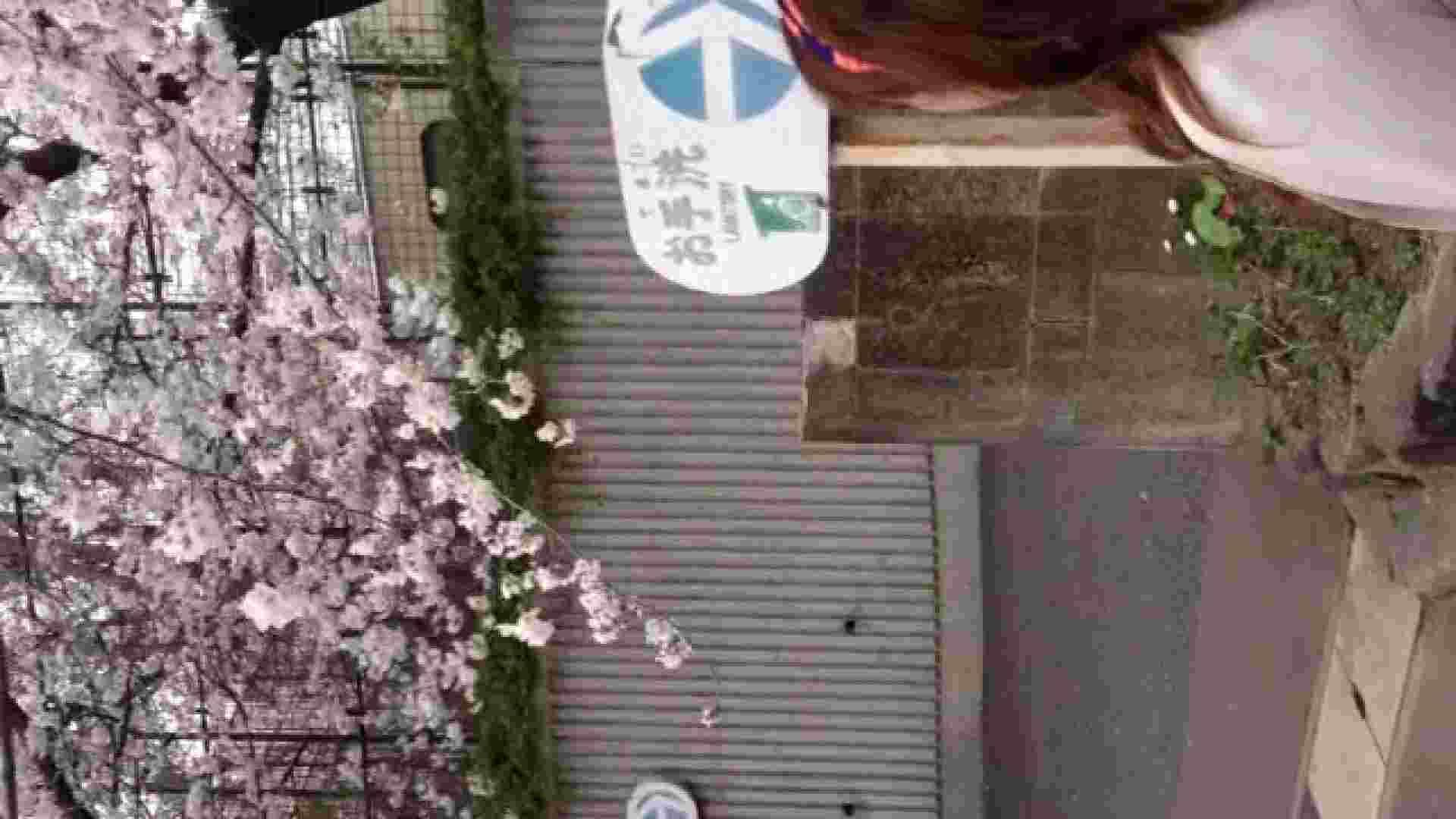 23(19日目)桜を見ながらお散歩 盗撮 ヌード画像 83pic 2