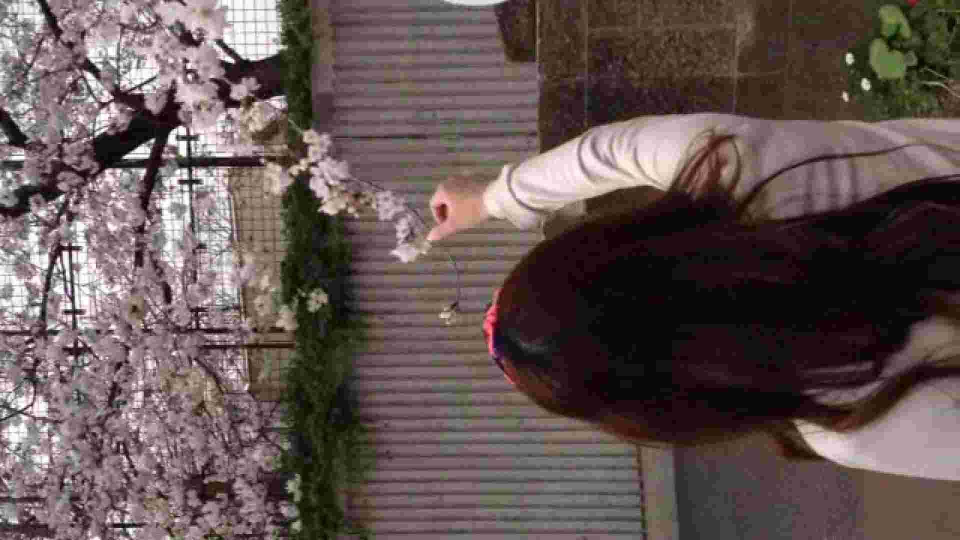 23(19日目)桜を見ながらお散歩 リアル・マンコ ヌード画像 83pic 3