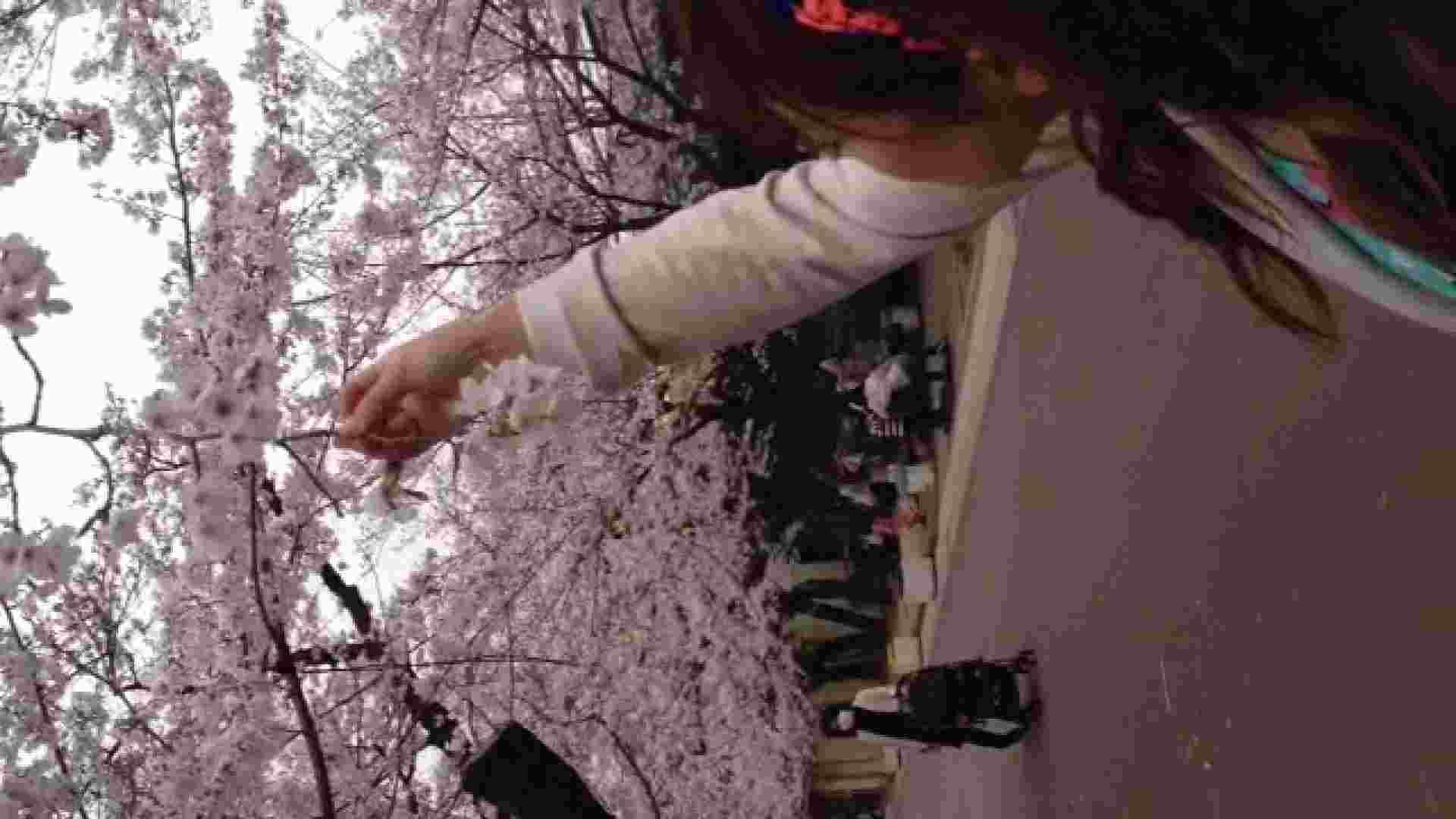 23(19日目)桜を見ながらお散歩 おまんこ無修正 ワレメ動画紹介 83pic 14