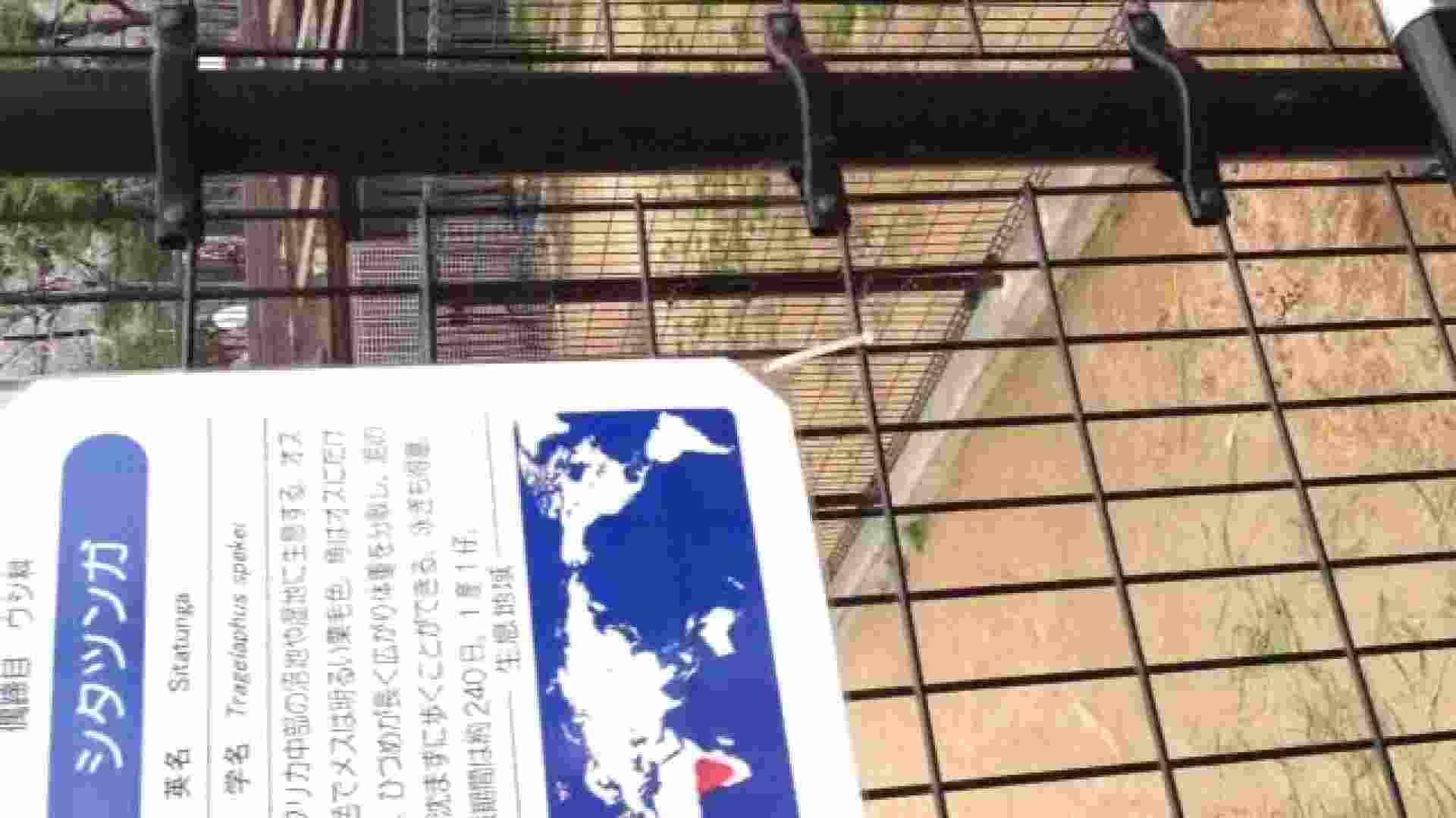 23(19日目)桜を見ながらお散歩 おまんこ無修正 ワレメ動画紹介 83pic 24