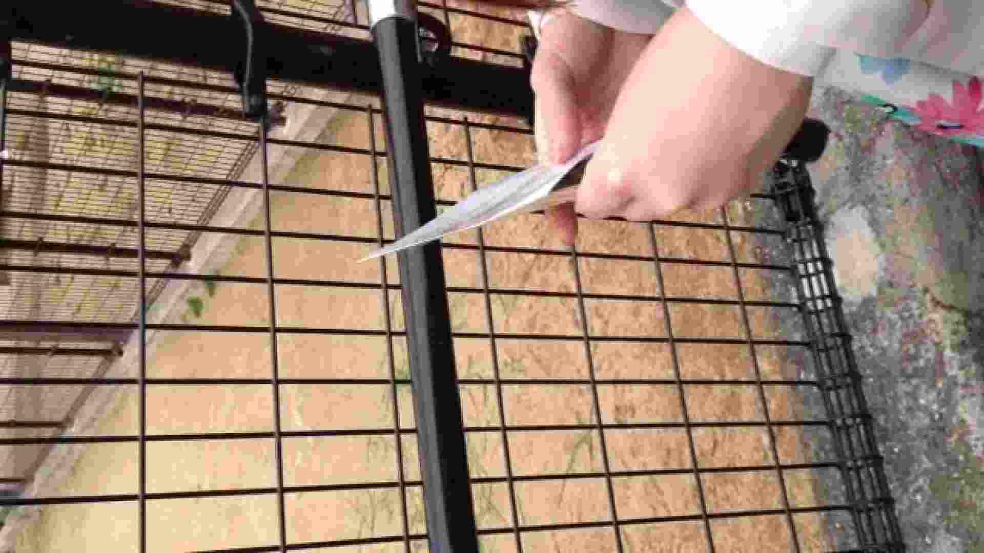23(19日目)桜を見ながらお散歩 覗き  83pic 25