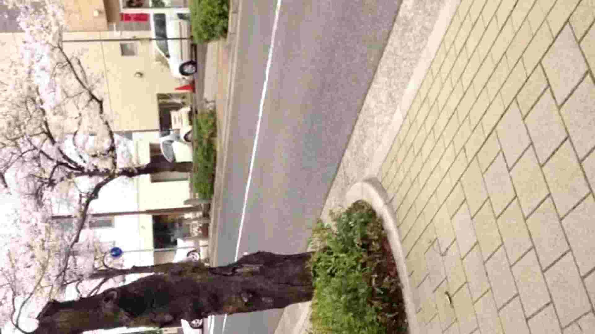 23(19日目)桜を見ながらお散歩 おまんこ無修正 ワレメ動画紹介 83pic 44