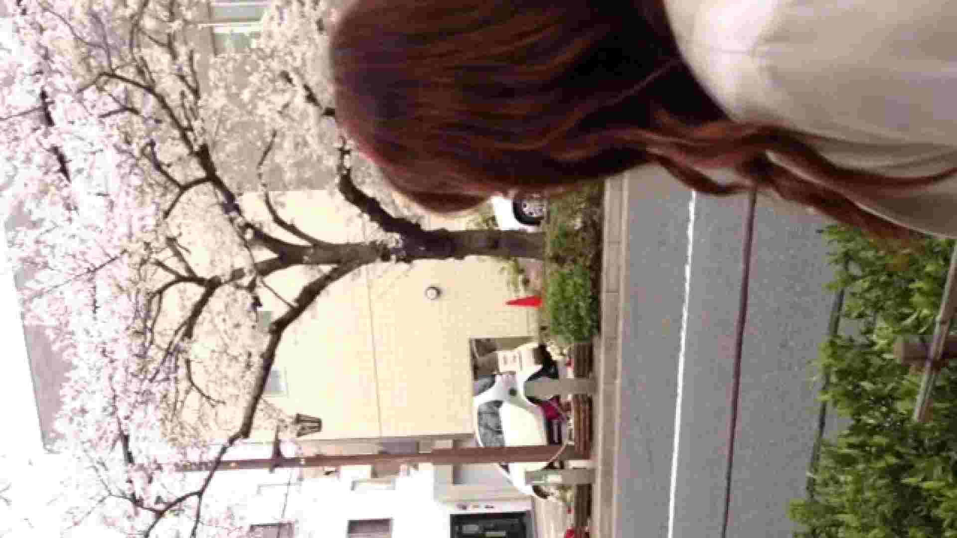 23(19日目)桜を見ながらお散歩 リアル・マンコ ヌード画像 83pic 48
