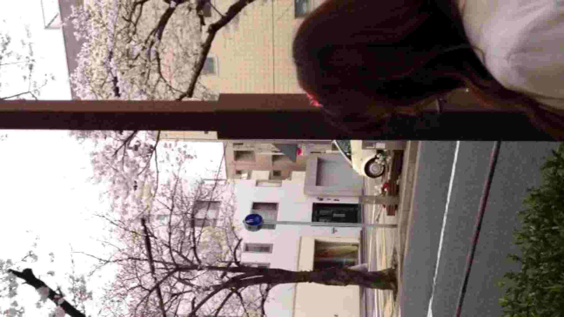 23(19日目)桜を見ながらお散歩 おまんこ無修正 ワレメ動画紹介 83pic 49