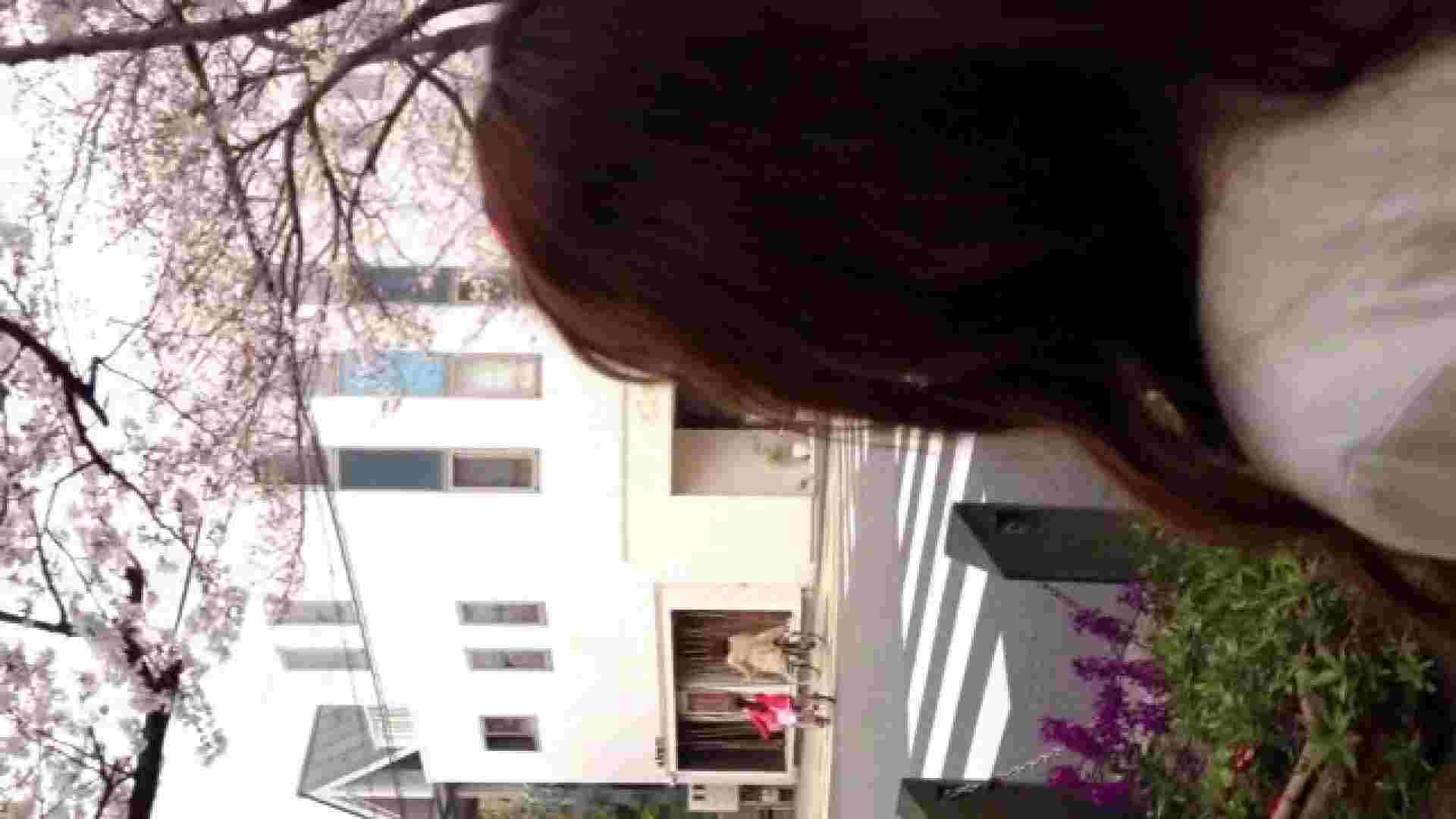 23(19日目)桜を見ながらお散歩 覗き  83pic 50