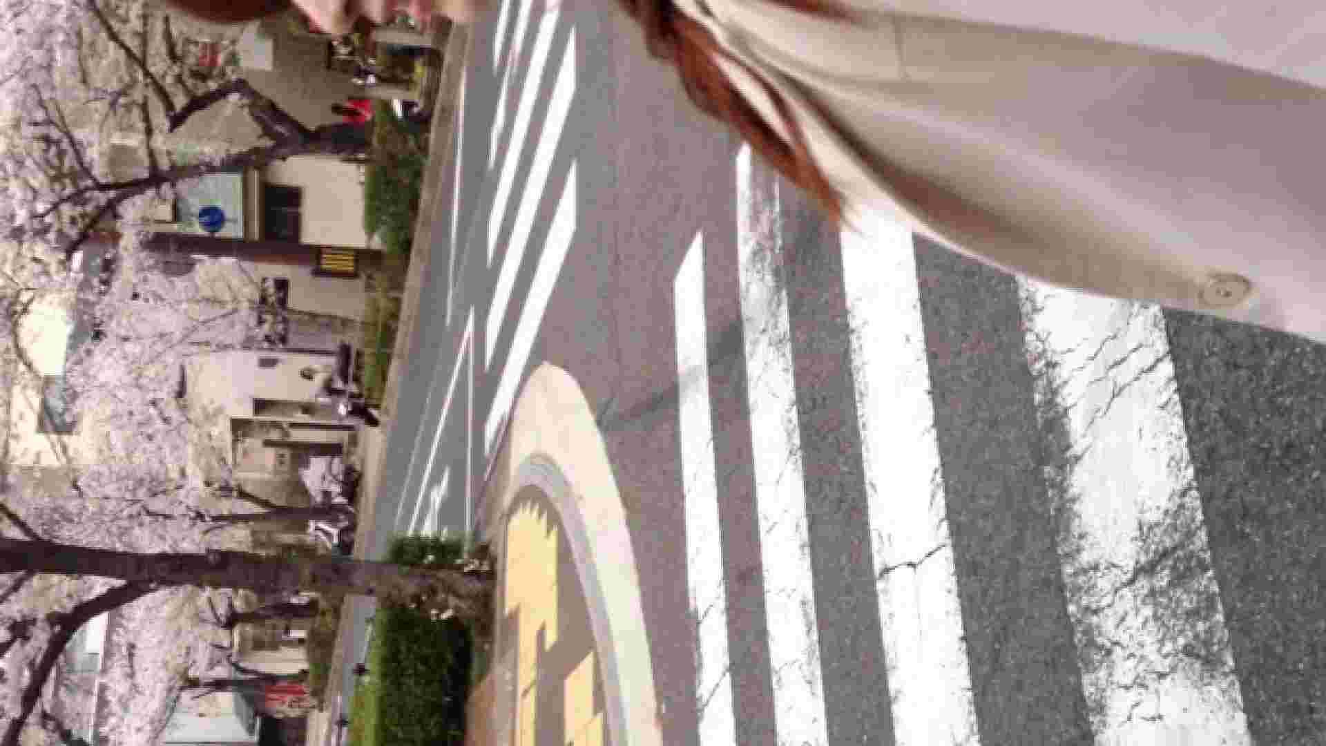 23(19日目)桜を見ながらお散歩 覗き  83pic 55