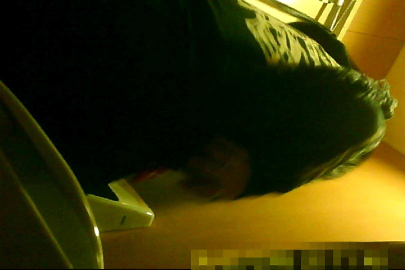 魅惑の化粧室~禁断のプライベート空間~13 綺麗なお姉さん  74pic 74